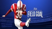 Flick Field Goal 16 Cheats
